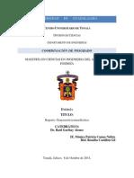 reporte termoelectrica.pdf