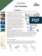 cours-biologie-marine-tuniciers-ppt.pdf