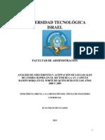 TESIS FINAL FINAL.pdf