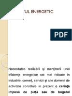 Auditul Energetic Mx