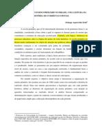 Solange_Aparecida_Zotti_artigo.pdf