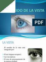 SENTIDO DE LA VISTA.pptx