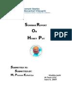 Honeypot Report