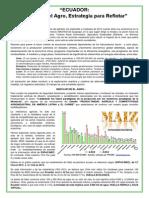 ECUADOR, Innovar en el Agro, Estrategia para Reflotar.pdf