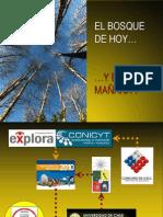 Presentación Carpe Diem - FINAL.ppt