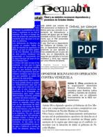 pequebu 4 2014.pdf