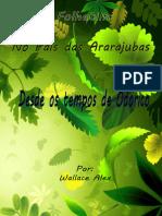 Desde os tempos de  Odorico.pdf