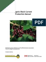 blackcurrantmanual.pdf
