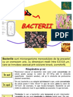 Microbiologie - Bacterii.ppt