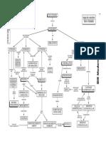 mapas058 Filo cnidaria.pdf