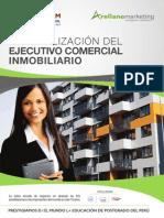 Brochure-Ejecutivo-Comercial-Inmobiliario.pdf