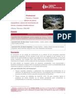 C.AF.OnLine.CIVIL.01.Anexo.pdf