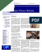 Boletin Electronico nº 1 año 2013 BMP.pdf