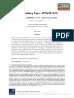 csae-wps-2014-19.pdf