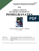 pomegranatevs2010.pdf
