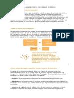 CONCEPTOS BASICOS DE LOS FONDOS COMUNES DE INVERSION.doc