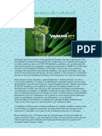 IMPORTANCIA DE YASUNI ITT.docx