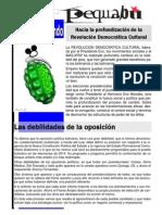 pequebu 5 2014.pdf