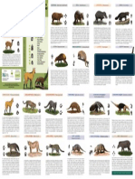 identificando_mamíferos_da_floresta_de_t (1).pdf