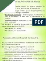 5. Quinto tema.pptx