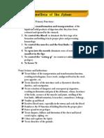 12 Spleen.pdf