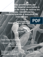 uy24-15462.pdf