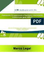 DS28_GUIA.pdf