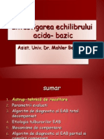 Investigarea Echilibrului Acido-bazic-Beatrice Mahler