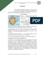 2) INFLUENZA.docx