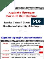 ASCB-Alginate Sponge_SC 1206