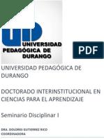 Seminario disciplinar I ensayo.docx
