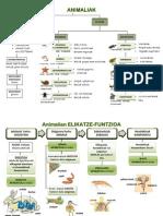 2-ANIMALIAK elikatze-harreman funtzioak ANAYA 5.pdf