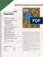 UNIDAD 2 CAPITULO 10.pdf