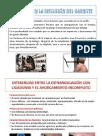 ELIX IDROGO-TRAUMATOLOGIA II..pptx