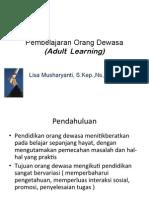 Adult Lerning LISA