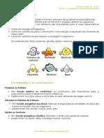 A.1.1 - Tipos e funções dos nutrientes - Ficha Informativa.pdf
