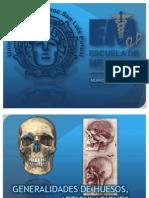 morfologa-generalidadessistemaoseomuscular-.pptx