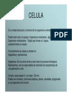 celula_membrana.pdf