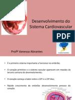 Desenvolvimento do Sistema Cardiovascular-1.pdf