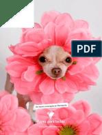 FLORERIA DOG.pdf
