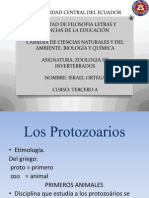 Protozoarios Power Point