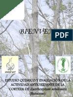 ESTUDIO QUÍMICO Y EVALUACIÓN DE LA ACTIVIDAD ANTIOXIDANTE DE LA CORTEZA DE Zanthoxylum Setulosum.pptx