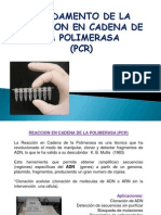 Fundamento PCR.ppt