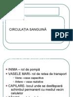 Sistemul Cardiovascular - Circulatia Sanguina