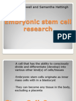 Embryonic Stem Cell Research