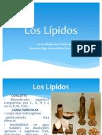 Los Lípidos Clase 6 de bioquimicas-2004-I.pdf