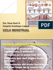 ciclo menstrual.pptx