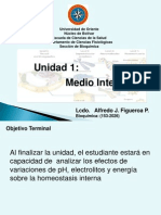U 01 Medio Interno.ppt