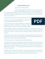 PLANEADOR 6° BIOLOGÍA 4TO PERIODO.docx