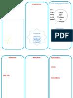 Editable Triptico - Tutos SZV.doc